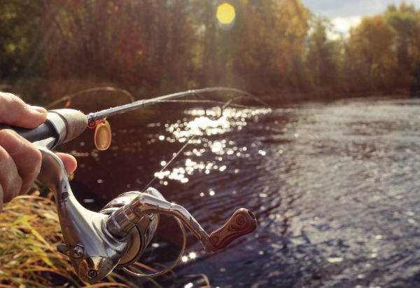 釣りに没頭する
