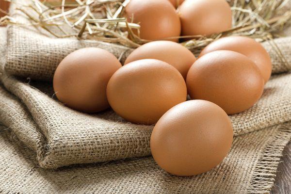 獲れたての卵
