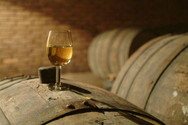 世界最古のグルジアワイン
