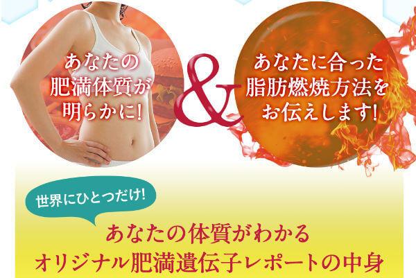 肥満遺伝子テスト